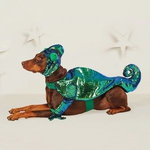 Chameleon Sequin Pet Costume